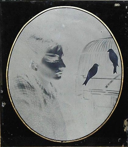 artwork_images_372_379472_joseph-cornell