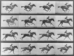 artwork_images_425934047_702719_eadweard-muybridge