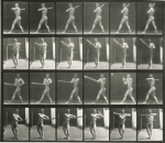 eadweard-muybridge-animal-locomotion-plate-274-photographs-other